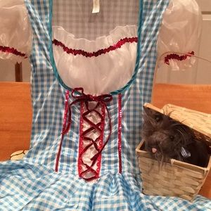 """Other - LIKE NEW, """"WIZARD OF OZ DOROTHY"""" COSTUME w/TOTO!"""